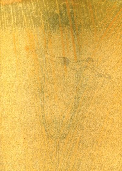 Crayon sur papier huilé, 25x32cm